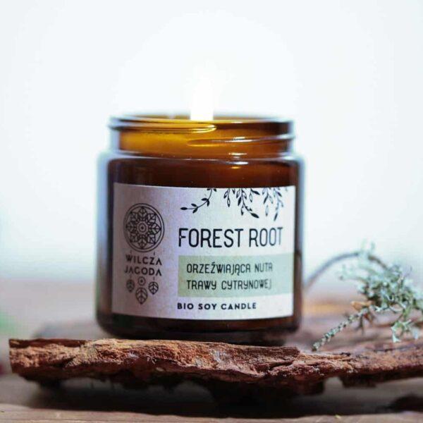 Forest Root - Świeca z wosku sojowego